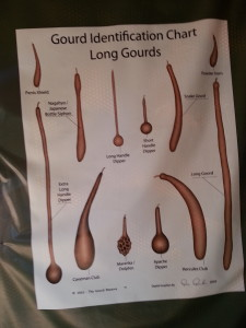 long gourd identification chart